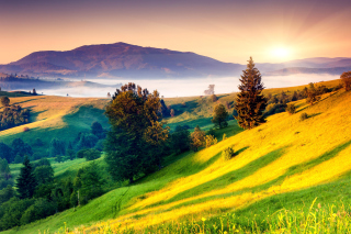 Landscape in Fog sfondi gratuiti per cellulari Android, iPhone, iPad e desktop