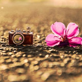 Macro Camera and Flower - Obrázkek zdarma pro 128x128