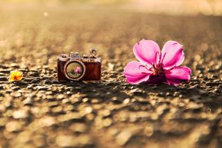 Macro Camera and Flower - Obrázkek zdarma pro Samsung Galaxy Tab 2 10.1