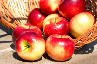 Autumn Apples Background for Android, iPhone and iPad