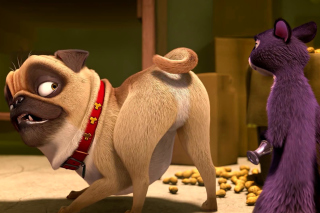Precious and Surly in The Nut Job Background for Android, iPhone and iPad