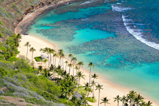 Free Oahu Hawaii Picture for Android, iPhone and iPad