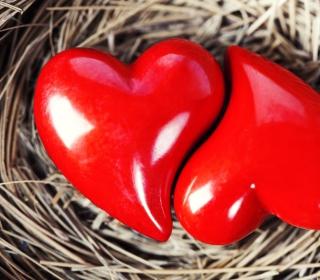 Heart In Nest - Obrázkek zdarma pro iPad 3