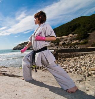 Karate By Sea - Obrázkek zdarma pro iPad mini 2