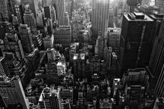 New York City Black And White Skyscrapers Picture for Android, iPhone and iPad