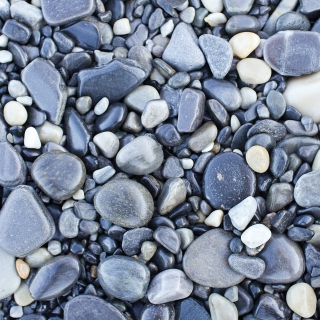 Pebble beach - Obrázkek zdarma pro iPad
