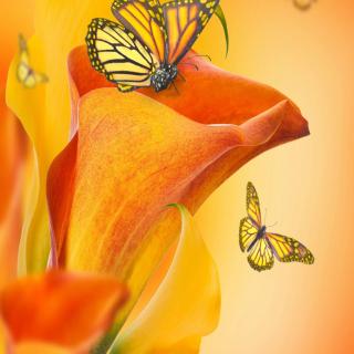 Beautiful Flower - Obrázkek zdarma pro iPad mini 2