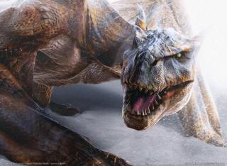 Monster Hunter 2 - Obrázkek zdarma pro 480x400