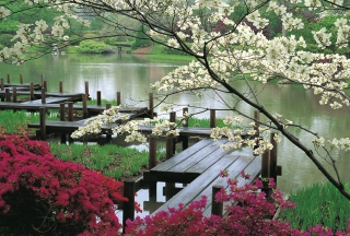 Japanese Garden And Lake Background for Android, iPhone and iPad