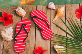 Kostenloses Flip Flops and Seashells Wallpaper für Android, iPhone und iPad