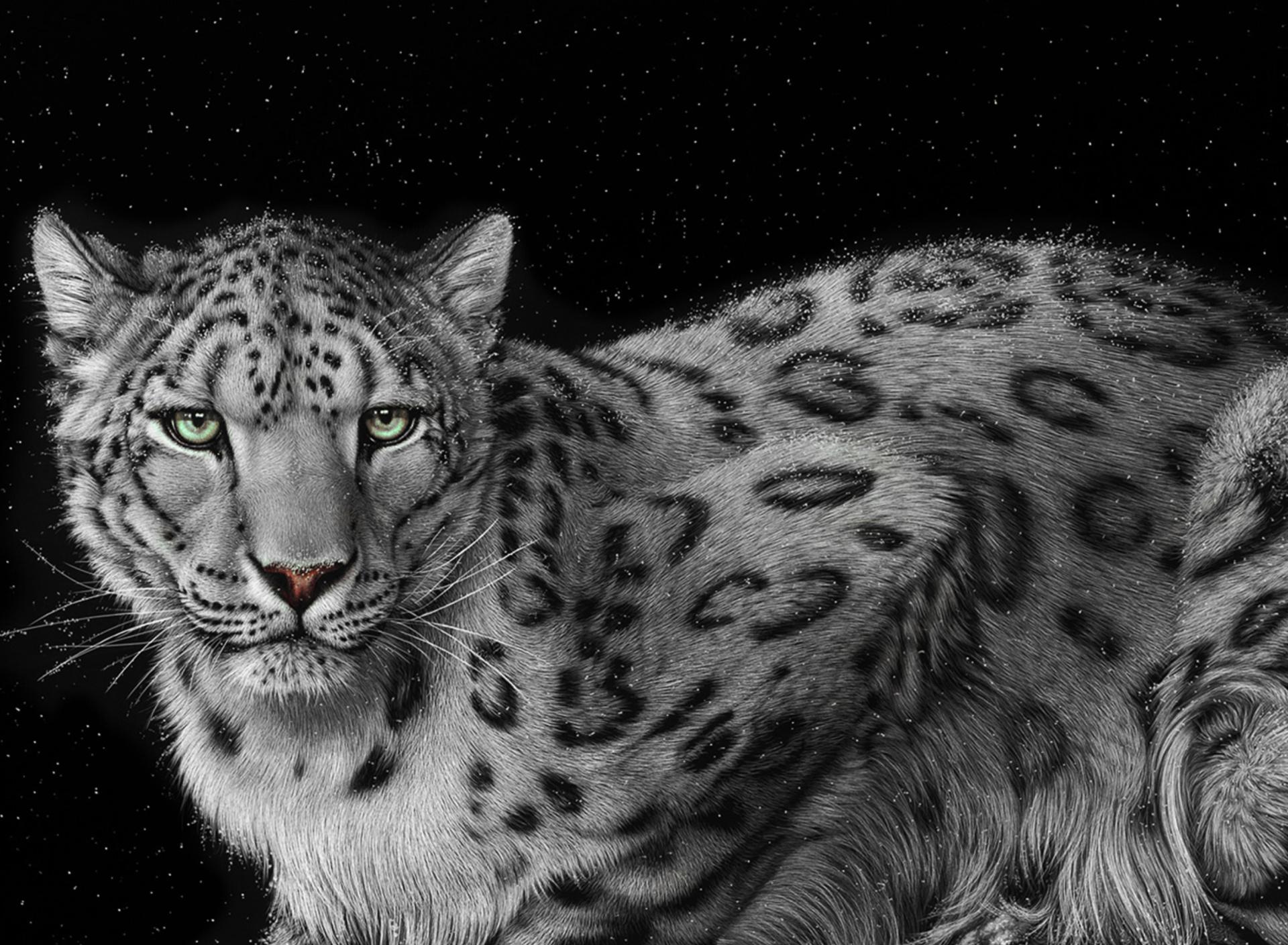воздух запечатлеть белый леопард картинки факторами