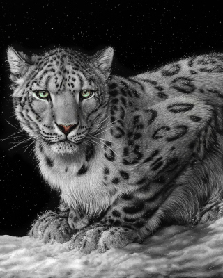 Snow Leopard Background for HTC Titan