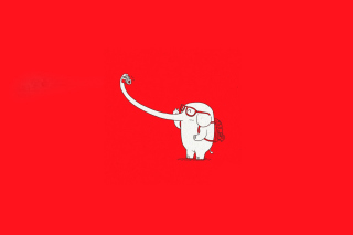 Free Elephant On Red Backgrpund Picture for Android, iPhone and iPad