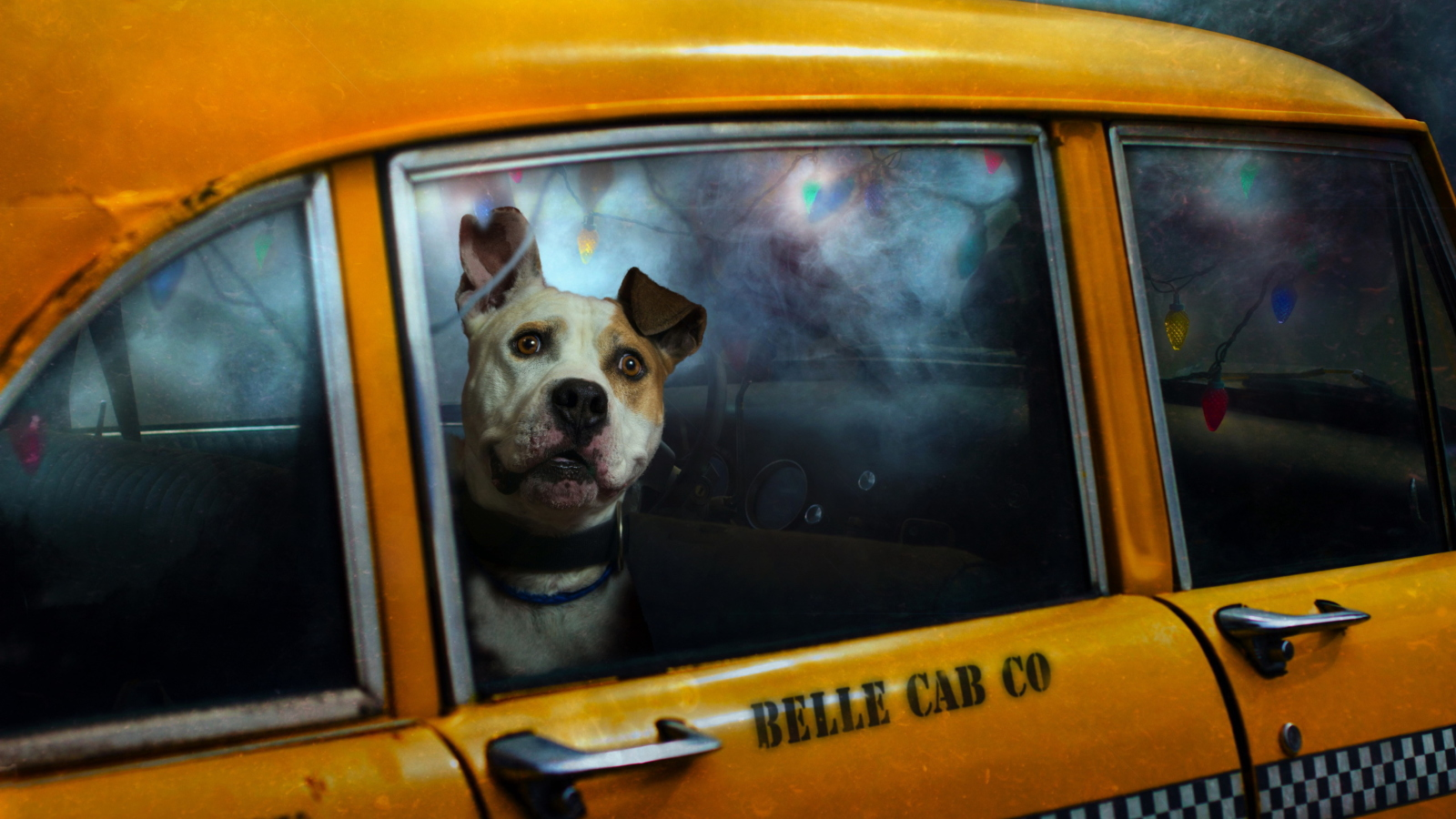 Screenshot №1 pro téma Yellow Cab Dog 1600x900