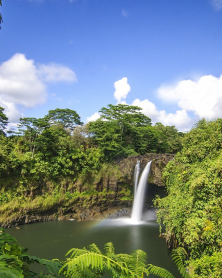 Free Waimoku Hawaii Waterfall Picture for iPhone 6 Plus