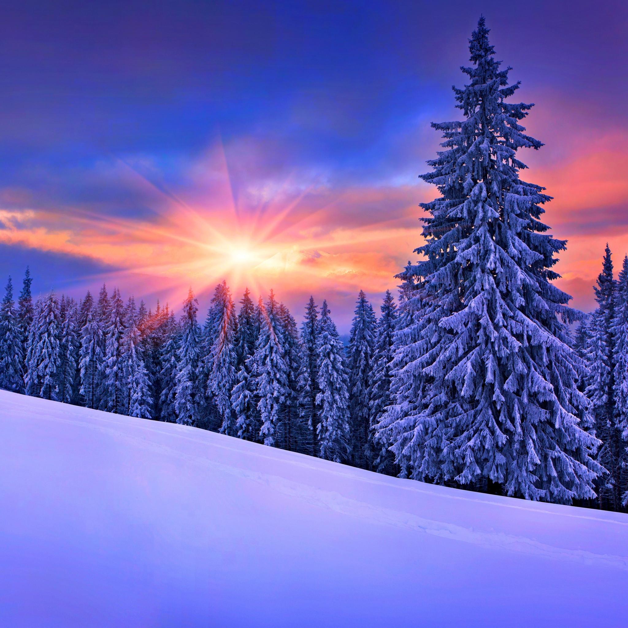Фото для обоев на телефон зима