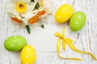 Easter Yellow Eggs Nest Background for Android, iPhone and iPad