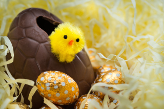 Easter Egg Background for Android, iPhone and iPad