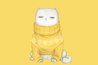 White Cat In Yellow Sweater - Obrázkek zdarma