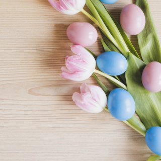 Easter Tulips Background for 208x208
