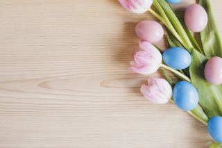 Easter Tulips Background for Samsung Galaxy S5