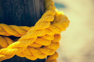 Yellow Rope Picture for Android, iPhone and iPad