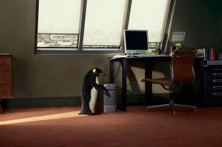 Free Penguin and Computer Picture for Android, iPhone and iPad