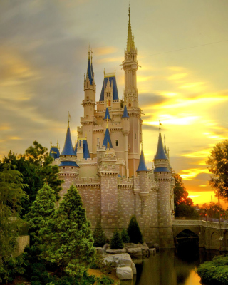 Disneyland Castle Wallpaper for 360x640