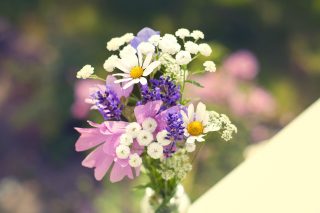 Free Bouquet of wildflowers Picture for Android, iPhone and iPad