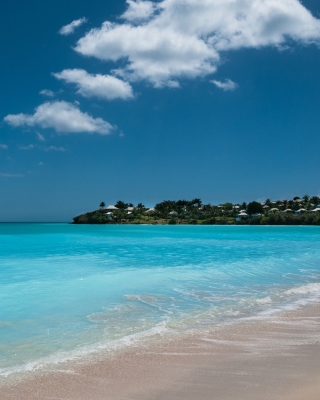 Valley Church Beach in Antigua Wallpaper for iPhone 6 Plus