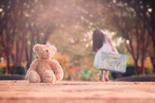 Teddy Bear Left Alone On Road Background for Android, iPhone and iPad