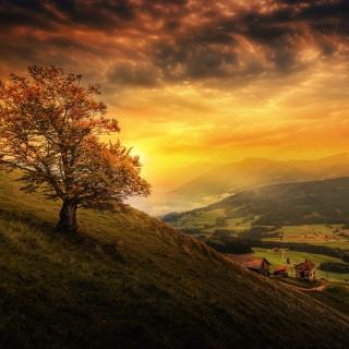 Обои Switzerland Autumn Scenery для iPad mini