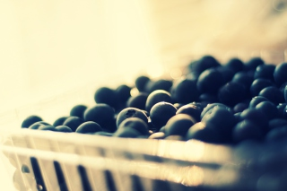 Basket Of Blackberries Background for Android, iPhone and iPad
