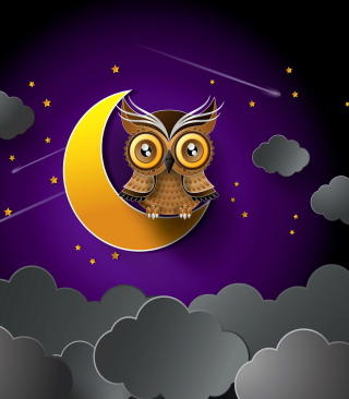 Owl Background for Nokia Asha 306