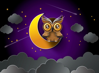 Owl Background for Widescreen Desktop PC 1280x800