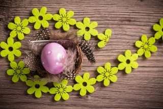 Purple Egg, Feathers And Green Flowers Background for Android, iPhone and iPad