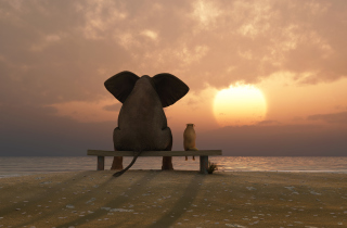 Elephant And Dog Looking At Sunset Background for Android, iPhone and iPad