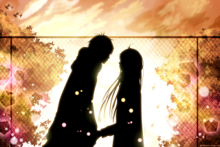 Kimi Ni Todoke Background for Nokia XL