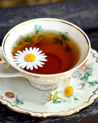 Tea with daisies Wallpaper for Nokia C1-01