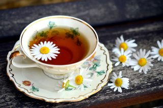 Kostenloses Tea with daisies Wallpaper für Android, iPhone und iPad