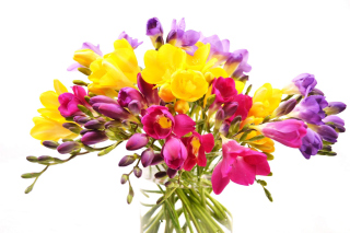 Free Summer Flowers Bouquet Picture for Android, iPhone and iPad