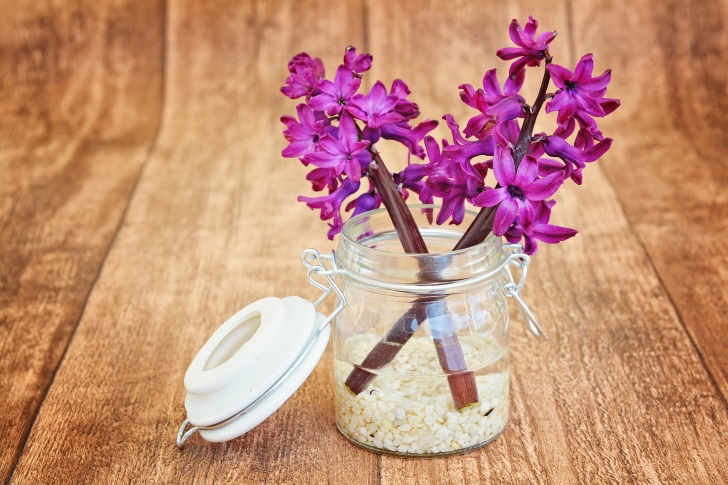 Flower petals in jar wallpaper