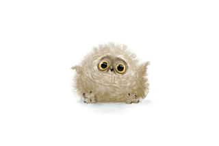 Funny Owl Illustration Picture for Android, iPhone and iPad