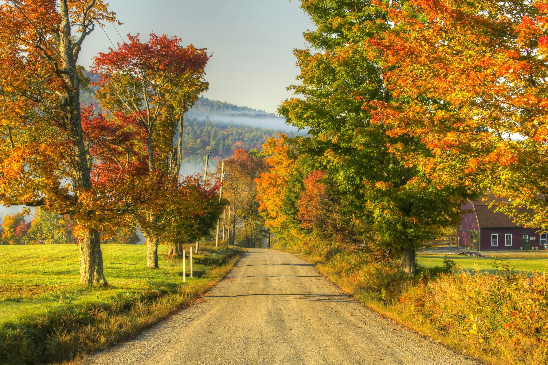 Открытки ранняя осень