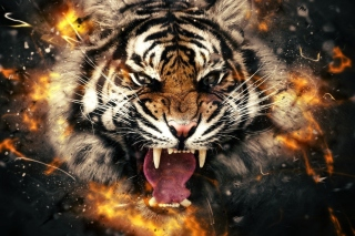 Fire Tiger Wallpaper for Android, iPhone and iPad