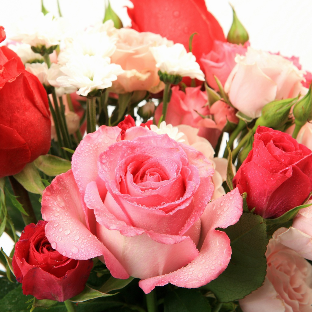 Screenshot №1 pro téma Bouquet of roses for Princess 1024x1024