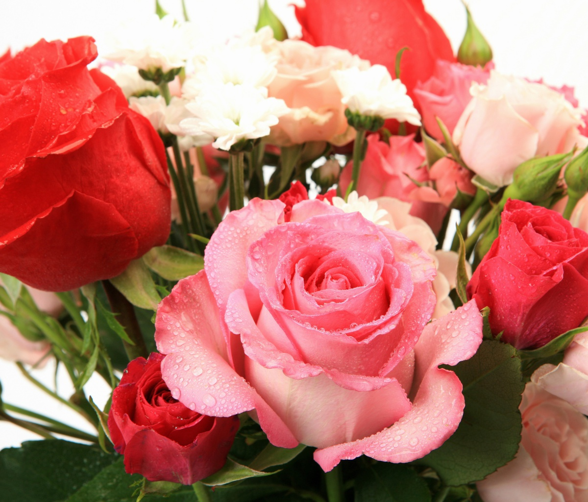 Screenshot №1 pro téma Bouquet of roses for Princess 1200x1024