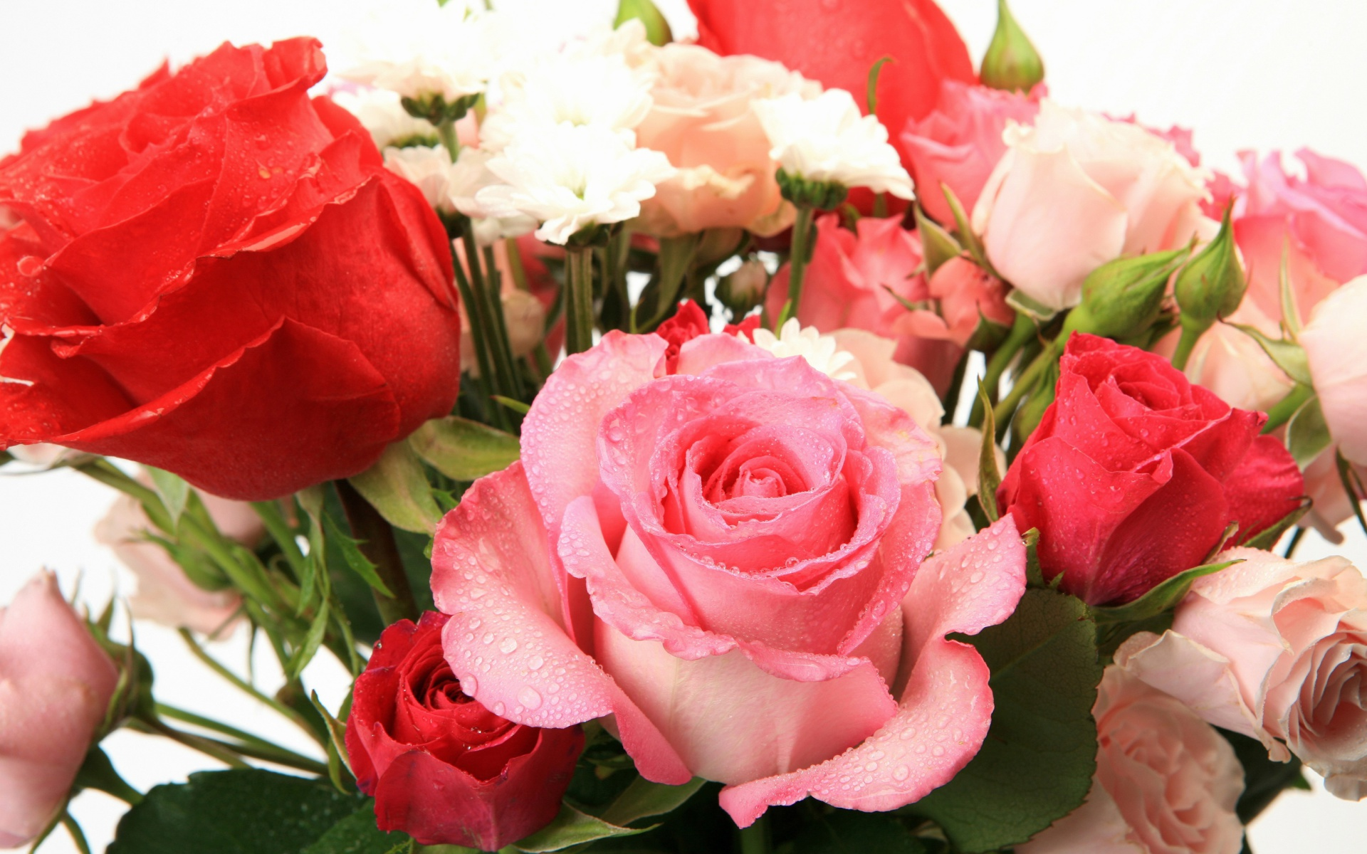 Screenshot №1 pro téma Bouquet of roses for Princess 1920x1200