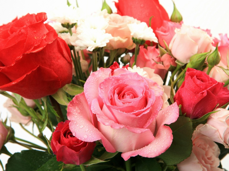 Screenshot №1 pro téma Bouquet of roses for Princess 800x600