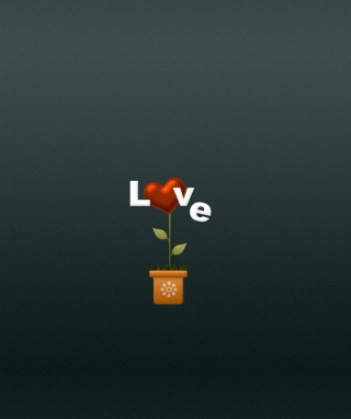 Free Flower Of Love Picture for Nokia C1-01